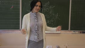 Teacher talking to pupils stock footage
