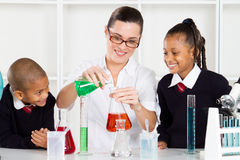 Teacher teaching students Stock Image