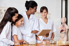 Teacher Using Digital Tablet With Students At Desk Royalty Free Stock Image