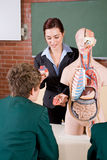 Teaching biology Stock Photo