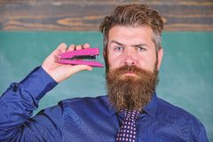 Teaching memorization techniques. Hipster teacher formal wear with neck tie holds stapler. Back to school and studying. Teacher bearded man with pink stapler stock photography