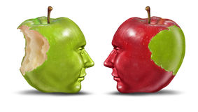 Teaching A Student. Education concept with green and red apples shaped as human heads exchanging knowledge and skill from teacher to trainee on a white Royalty Free Stock Image