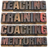 Teaching, training, coaching and mentoring. A collage of isolated words in vintage letterpress wood type printing blocks stock photo
