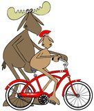 Teaching a young moose to ride a bicycle Royalty Free Stock Photography