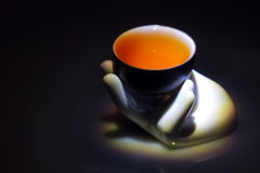 Teacup Foto de Stock Royalty Free
