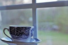 teacup Fotografering för Bildbyråer