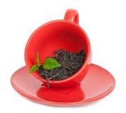Teacup with black tea Royalty Free Stock Photos