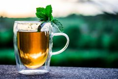 Teacup, Cup Of Tea, Tee, Drink, Hot Royalty Free Stock Images