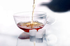Teacup des Glases mit Tee und drei Stücke Zuckers Stockbilder