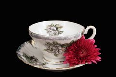 Teacup and Flower. A delicate teacup/saucer with a red flower royalty free stock images