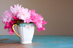 Teacup flowers. Old teacup with azalea flowers Royalty Free Stock Photo