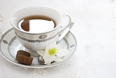 Teacup and flowers Stock Images