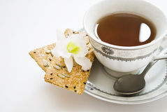 Teacup and flowers Royalty Free Stock Photo