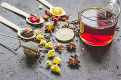 Teacup and herbs on grey background Stock Photos