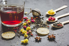 Teacup and herbs on grey background Royalty Free Stock Image