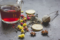 Teacup and herbs on grey background Stock Image