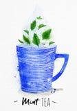 Teacup mint tea Royalty Free Stock Photo