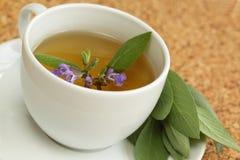 Teacup mit weisem Kräutertee /Salvia officinalis/ Lizenzfreie Stockbilder