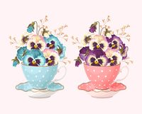 Teacup with pansies. Vector illustration of vintage teacup with pansies in two color variants Stock Photo