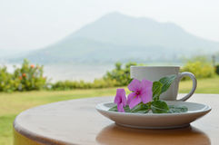 Teacup and pink flower Royalty Free Stock Photo