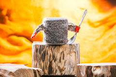 Teacup wearing sweater on wood Stock Photography