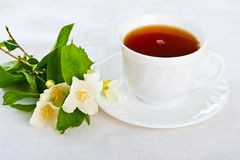 Teacup on white napkin. Royalty Free Stock Image
