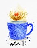 Teacup white tea Stock Photo