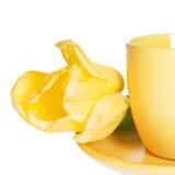 Teacup & Yellow Tulip Stock Photography