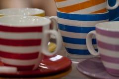 teacups Fotografia Royalty Free
