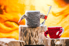 Teacups wearing sweater on wood Royalty Free Stock Photography