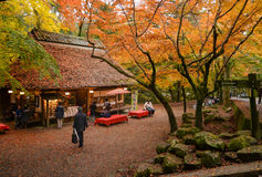 Free Teahouse At Nara Park, Japan Stock Photos - 83048253