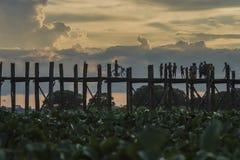 Teak bridge Stock Photography
