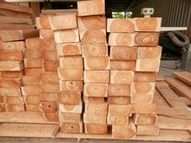 Teak planks. For building furniture, lumber business, Panama carbon credits stock images