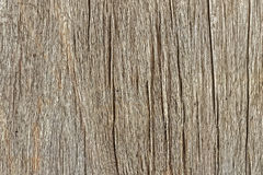 Teak Textures, Background Stock Images