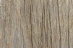 Teak Textures, Background Stock Images