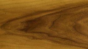 Teak veneer. Natural background: the decorative finishing material veneer teak tree, grows in tropics Stock Photo