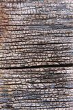 Teak wood Royalty Free Stock Images