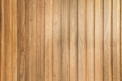 Teak wood plank Royalty Free Stock Image