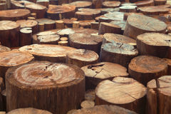 Teak wood stumps background with narrow focus. Teak wood stumps with cracks and annual rings Stock Photography