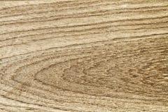 Teak wood surface Stock Images
