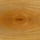 Teak wood surface close up Stock Image