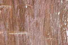 Teak wood surface. Old wooden surface of the pole Stock Images