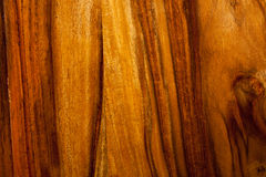 Teak wood texture. Close-up teak wood textured background Stock Images