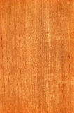 Teak (wood texture) Stock Image