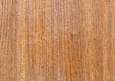 Teak wood texture background Royalty Free Stock Images