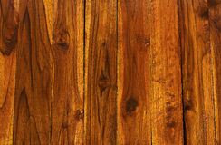 Teak wood texture  pattern background Stock Image