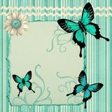 Teal Butterfly Stationary Royalty Free Stock Images
