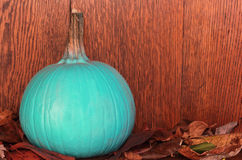 Teal pumpkin Stock Images