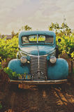 Teal Vintage Car in Farm during Day Time Stock Photo