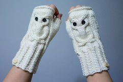 Teal White Crochet Fingerless Mitts Stock Photos